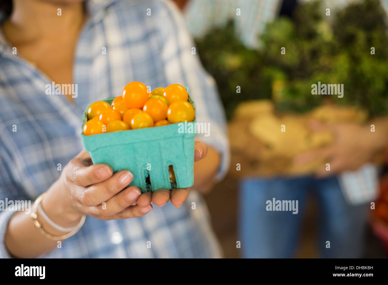 Two people with baskets of tomatoes and curly green leafy vegetables. Working on an organic farm. - Stock Image