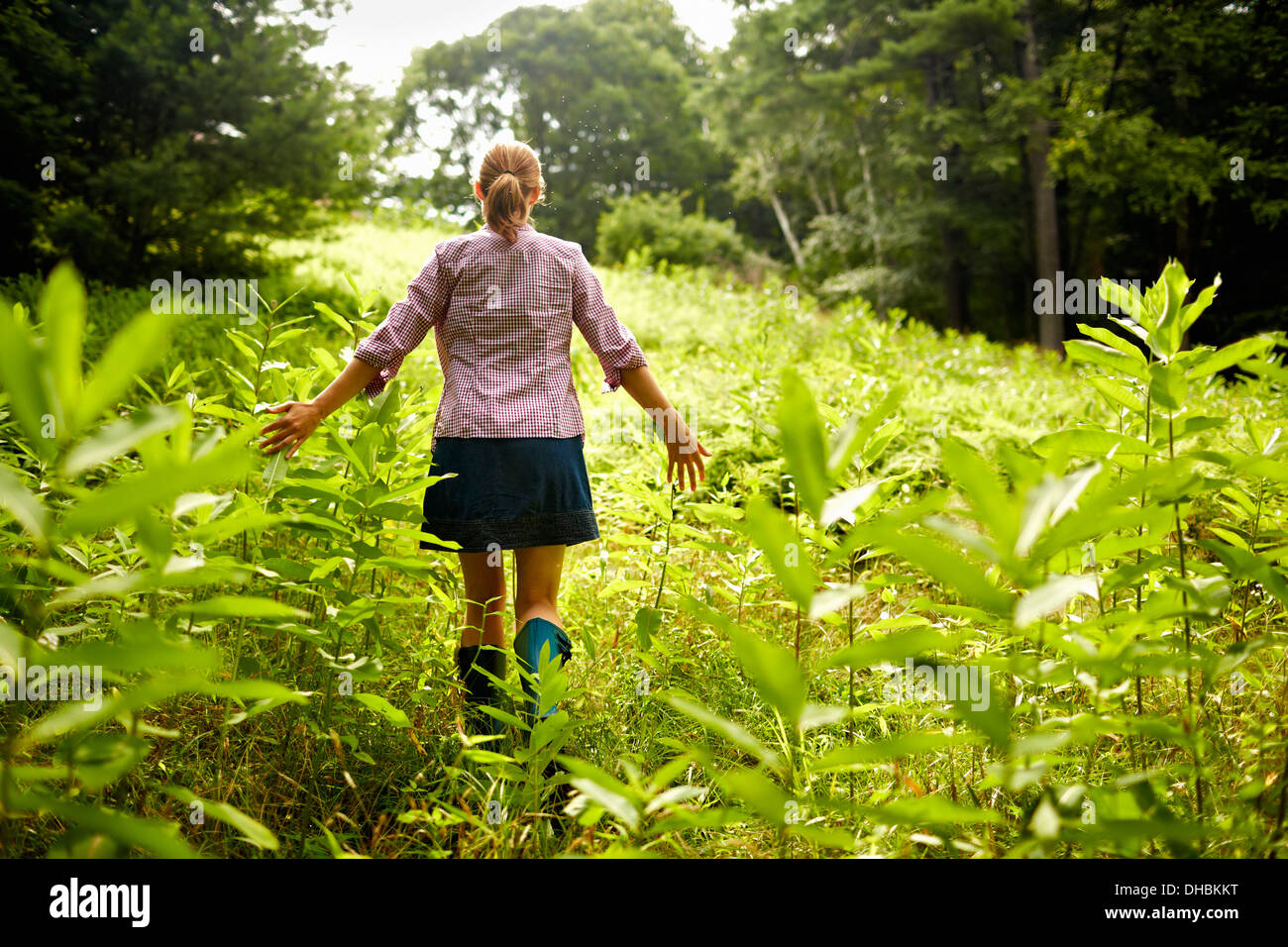 A woman walking through the undergrowth in woodland, with her arms brushing the tops of the wild plants. Stock Photo