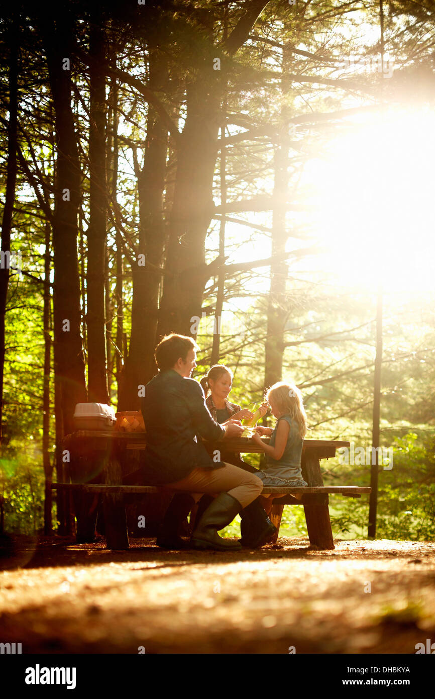 Three people, a family sitting at a picnic table under trees, in the late afternoon. - Stock Image
