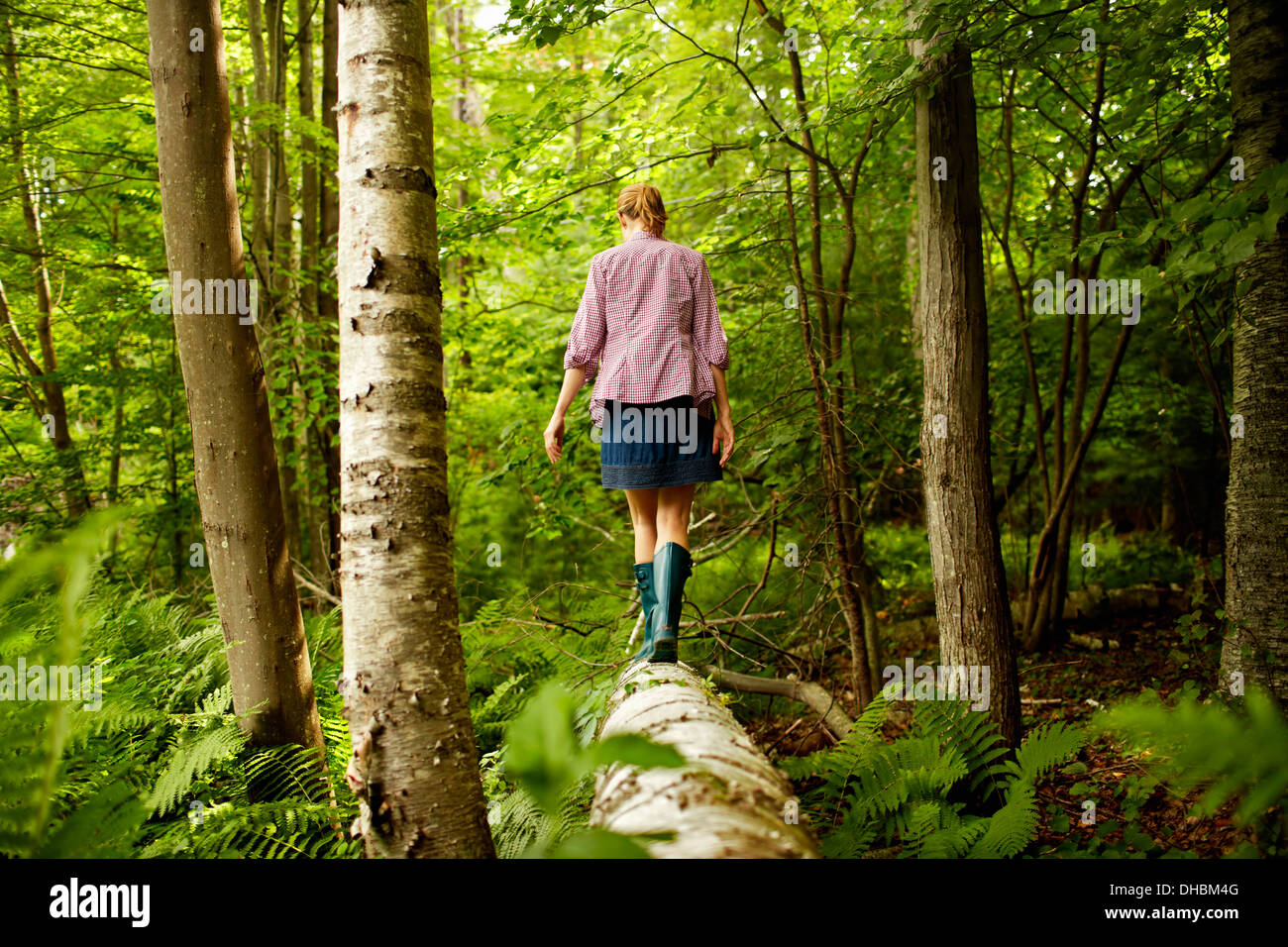 A woman in wellingtons walking along a fallen tree trunk, in woodland. - Stock Image