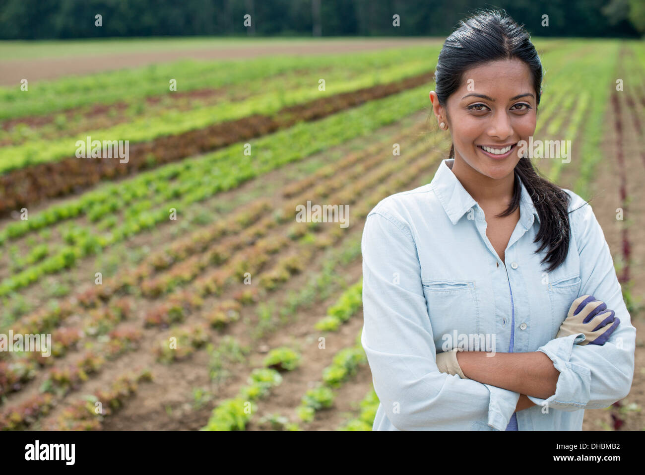 A woman standing in a farm field, with small salad plants growing in rows. - Stock Image