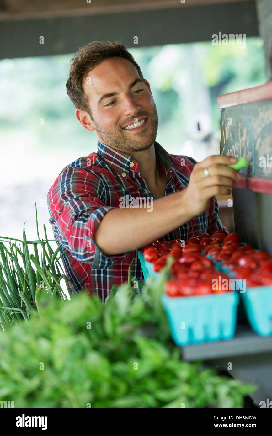 An organic fruit stand. A man chalking up prices on the blackboard. - Stock Image