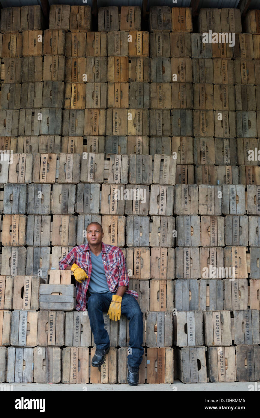 A farmyard. A stack of traditional wooden crates for packing fruit and vegetables. A man sitting on a packing case. - Stock Image