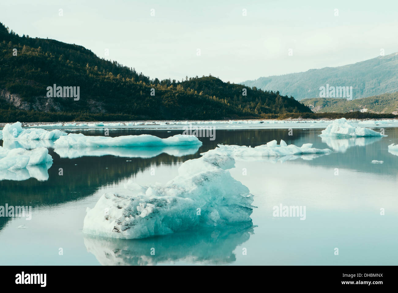 Icebergs floating off the shore at the end of the McBride Glacier, off Alaska. Stock Photo