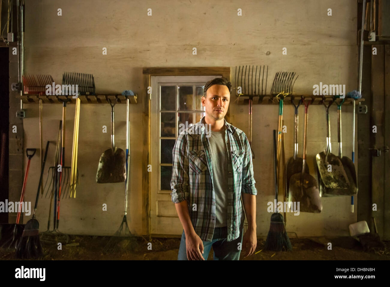 An organic farm in the Catskills. A man standing in a barn with equipment stored around the walls. - Stock Image