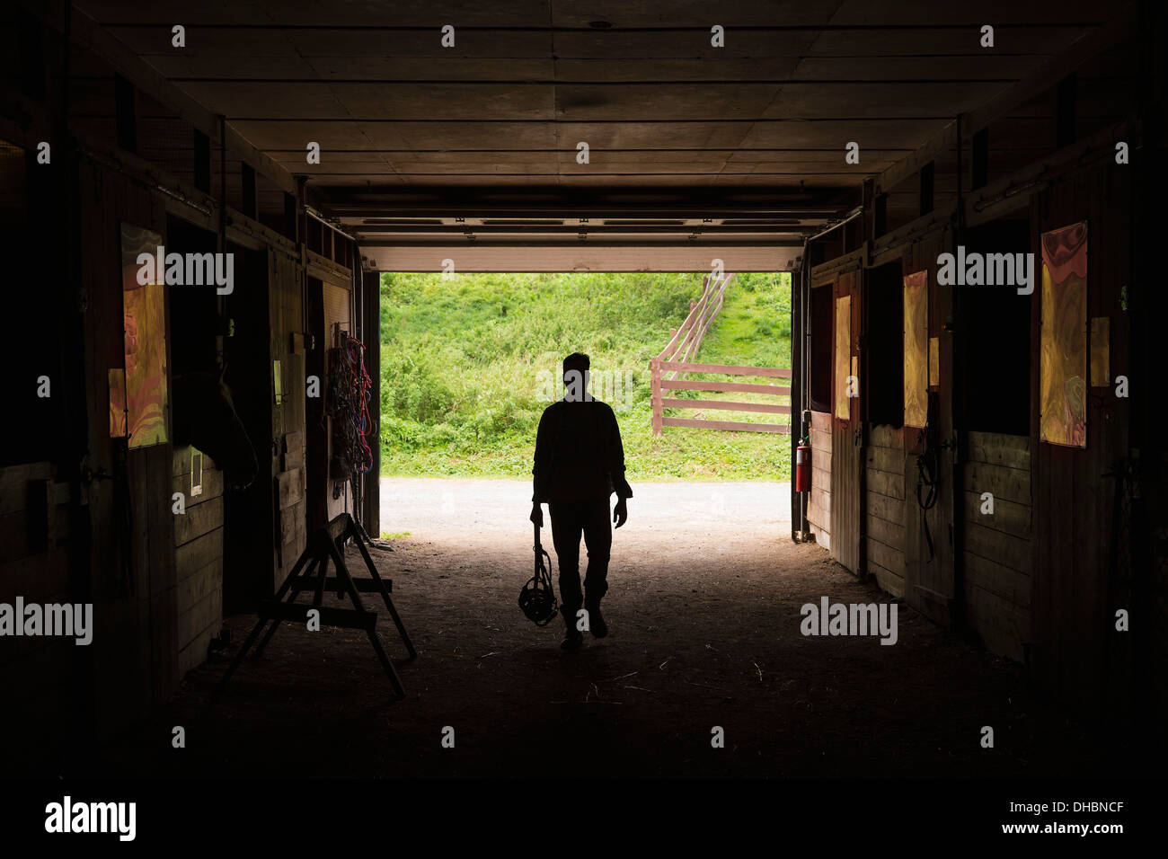 An organic farm in the Catskills. A man walking through a stable. - Stock Image