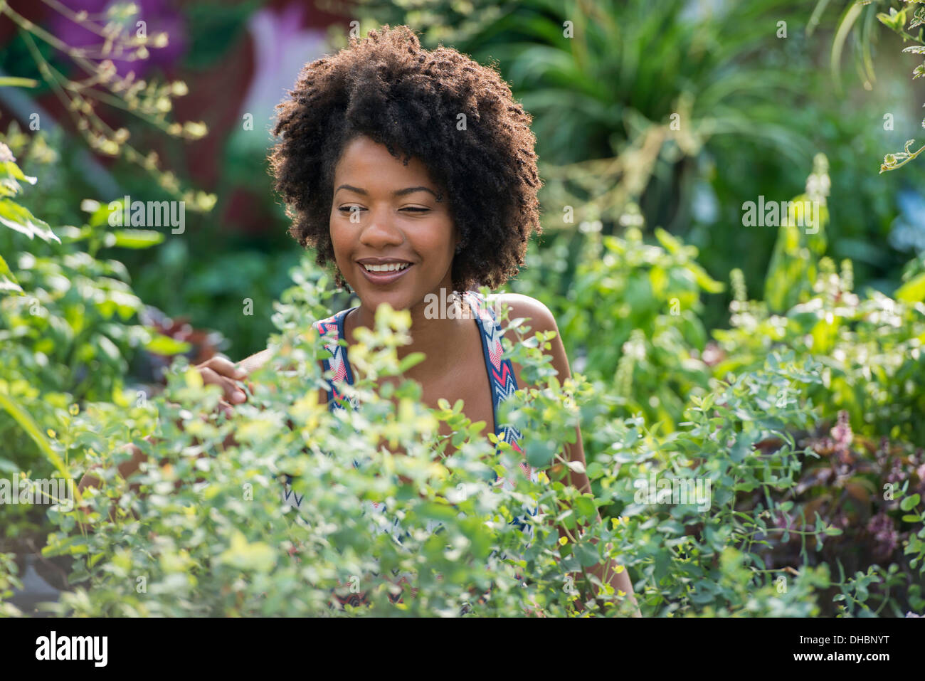 A woman standing in a plant nursery, surrounded by plants, flowers and foliage. Stock Photo