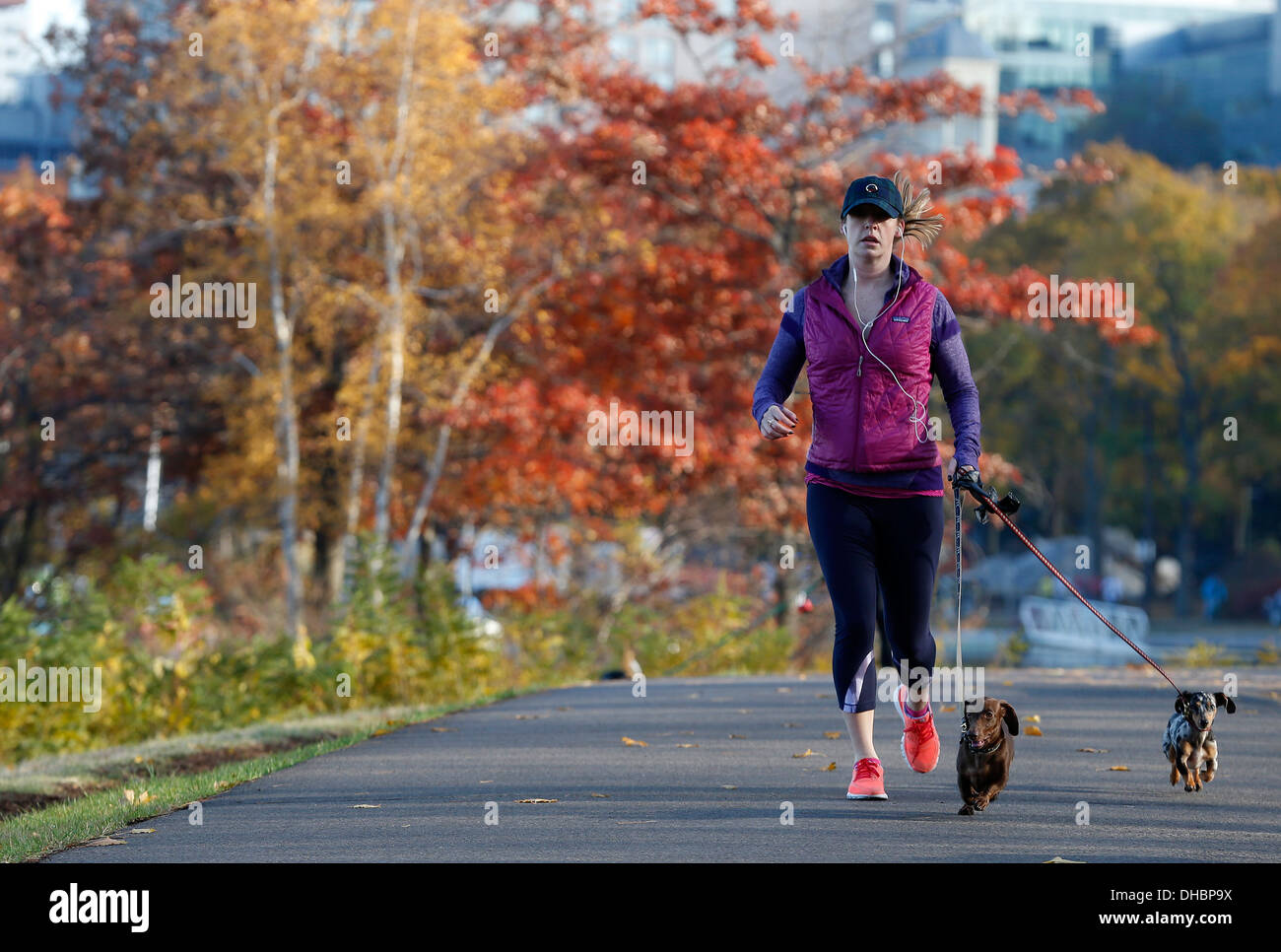 Women jogging with small dogs on the Esplanade in Boston, Massachusetts, USA - Stock Image