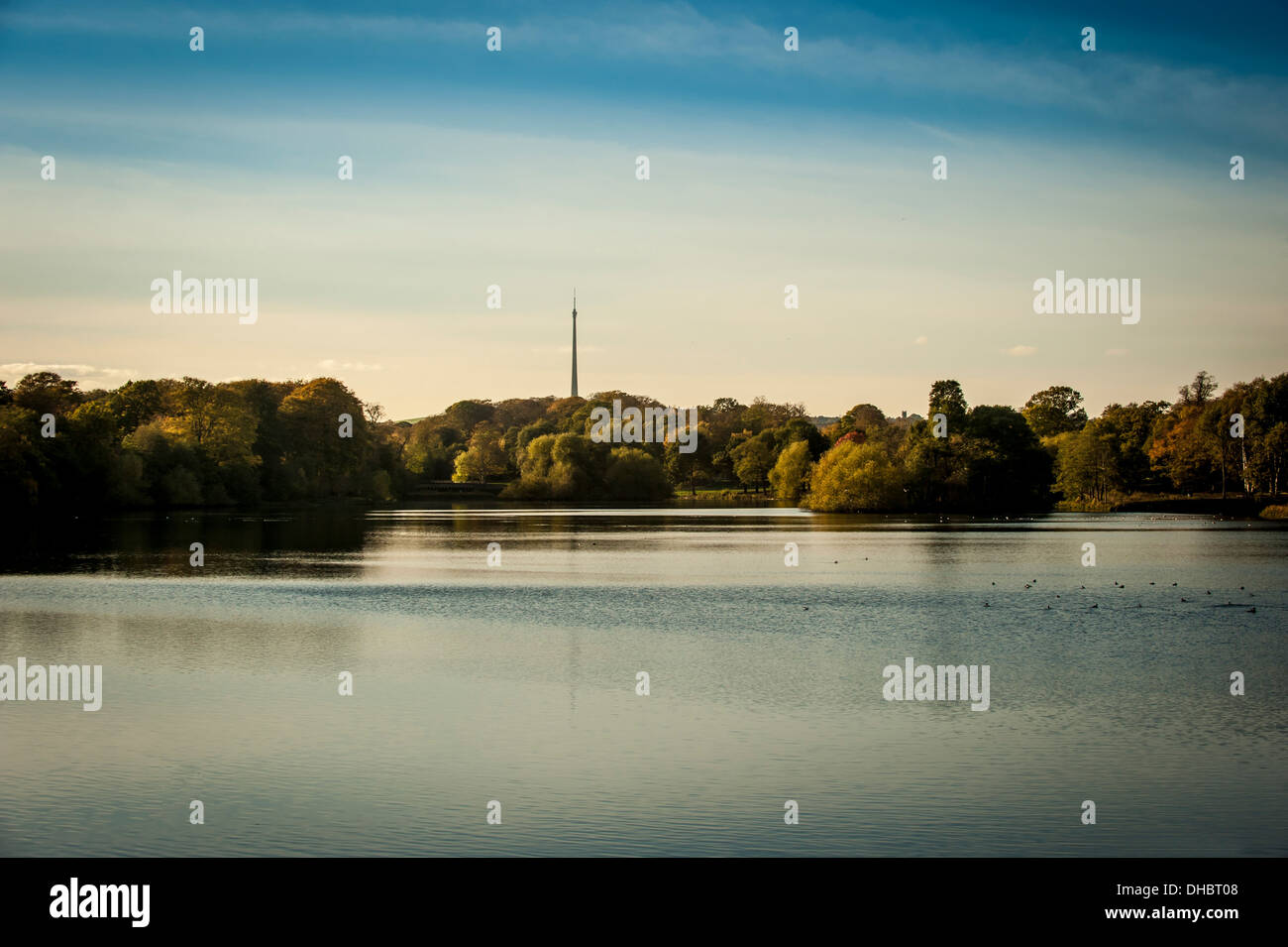 'Arqiva Tower' commonly known as Emley Moor Mast viewed from Yorkshire Sculpture Park, UK. - Stock Image