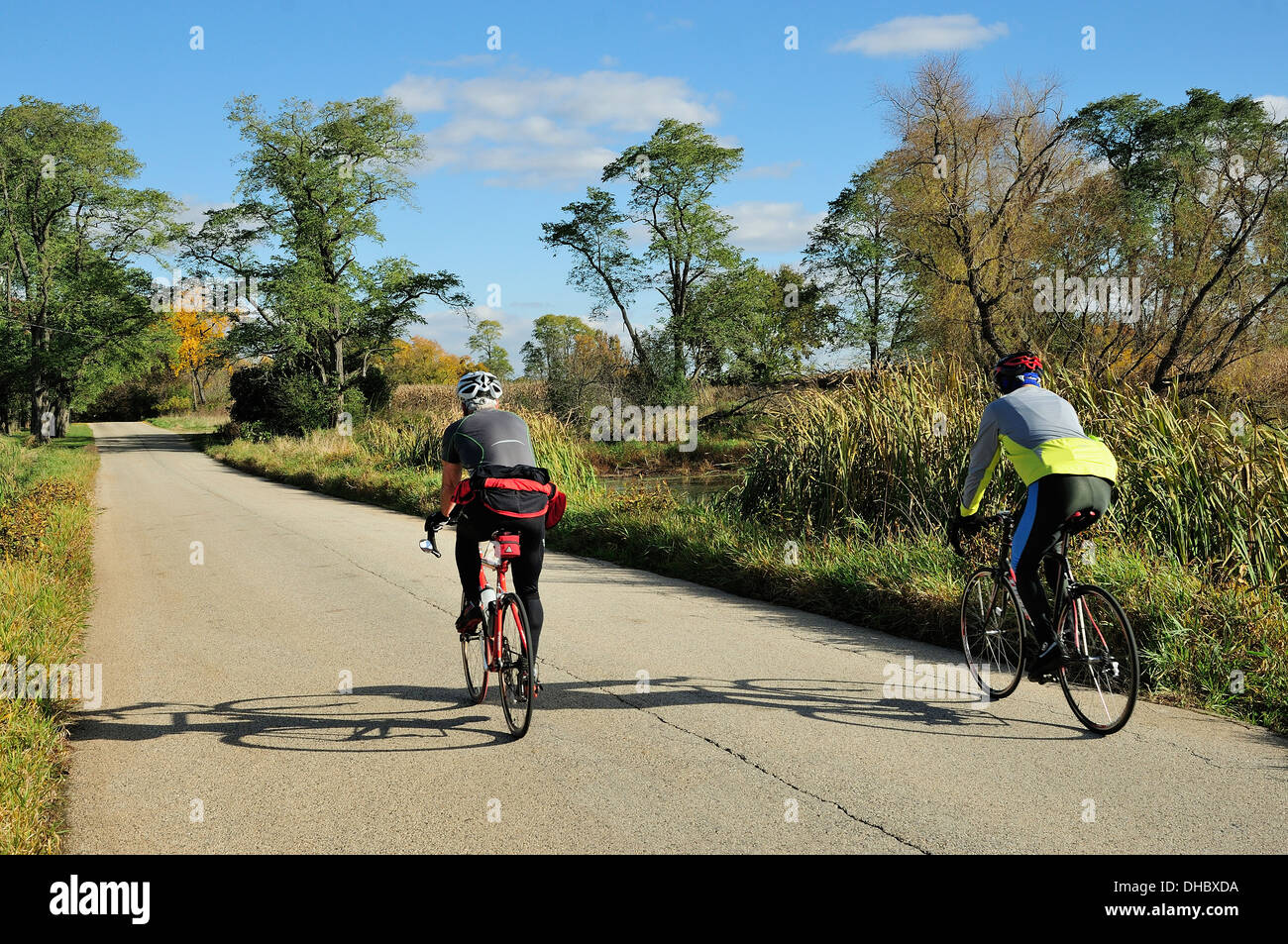 Two road bicyclists riding past autumn marshland. - Stock Image