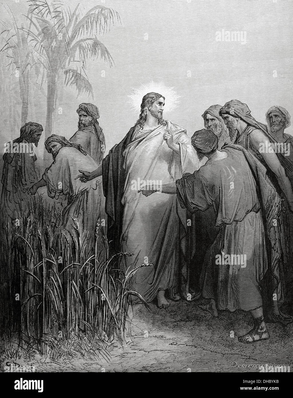 New Testament. Gospel of Matthew. Chapter XII. The apostles gathered ears in the day of rest. Engraving. - Stock Image