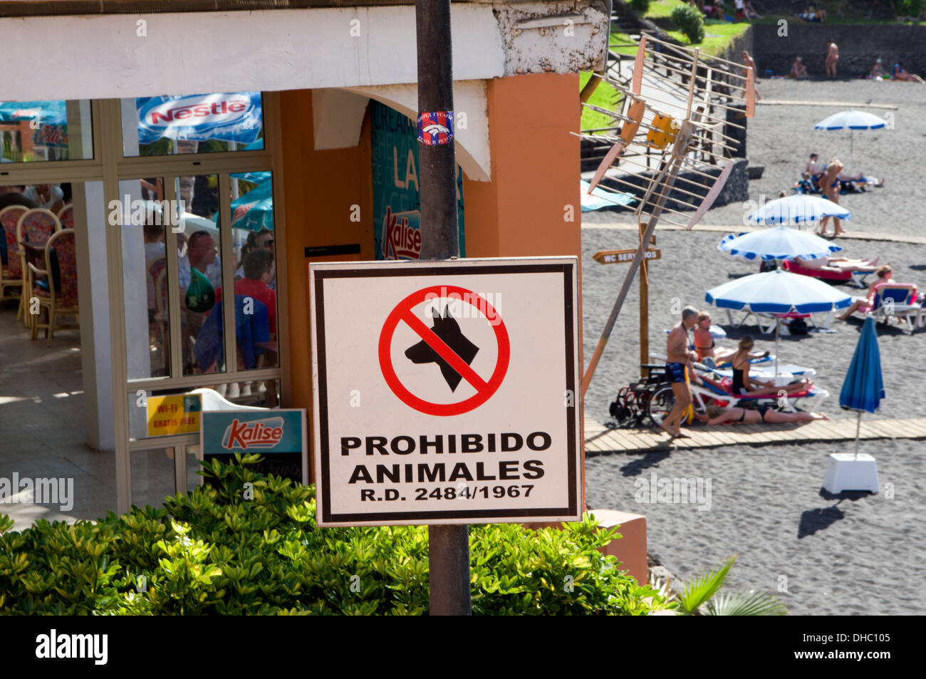 Sign in Spanish Prohibiting animals from Playa Arena Beach, Tenerife, Canary Islands, Spain. - Stock Image