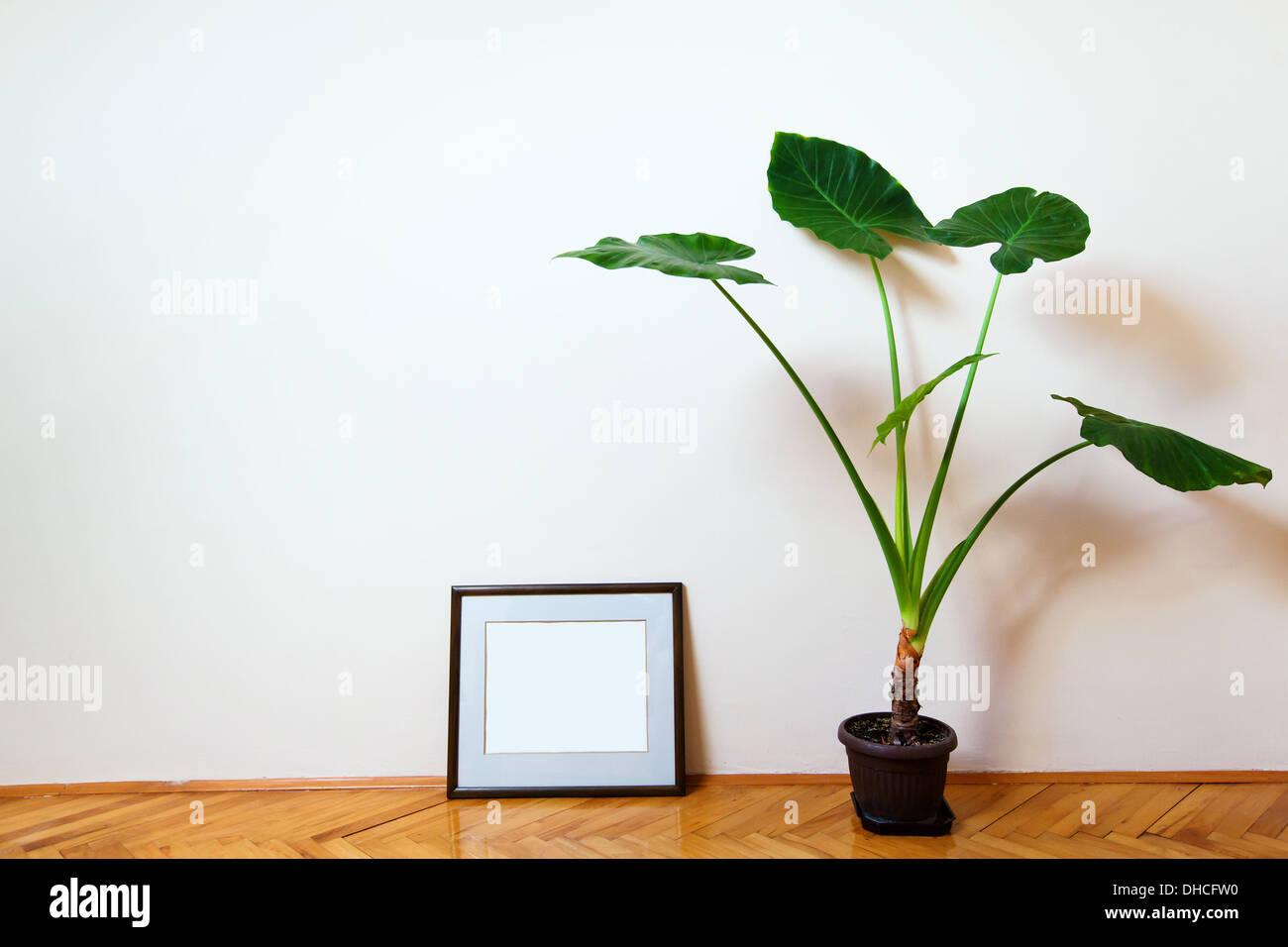 room - Stock Image