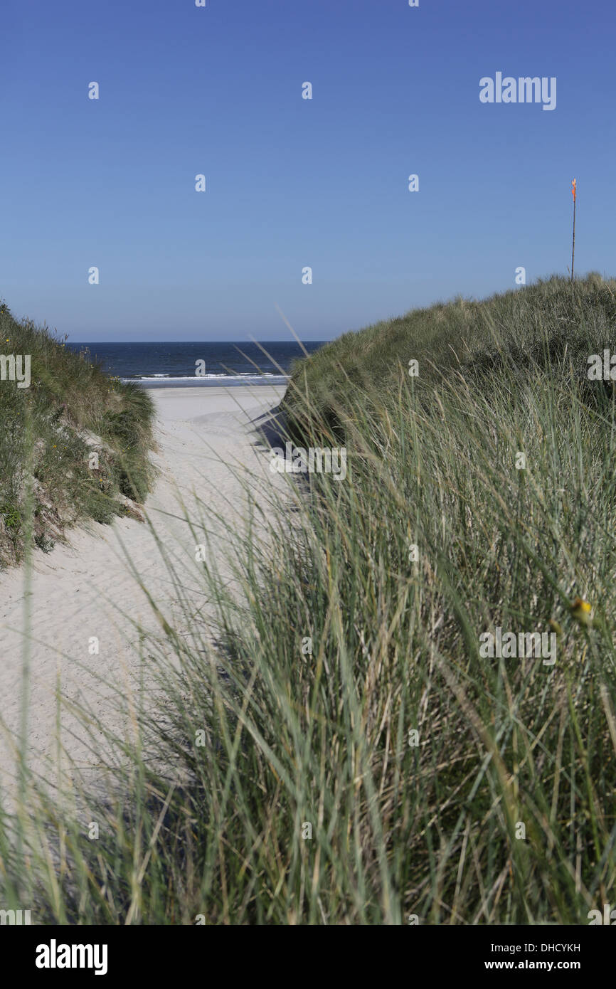 Germany, Lower Saxony, East Frisia, Langeoog, dune at the beach Stock Photo