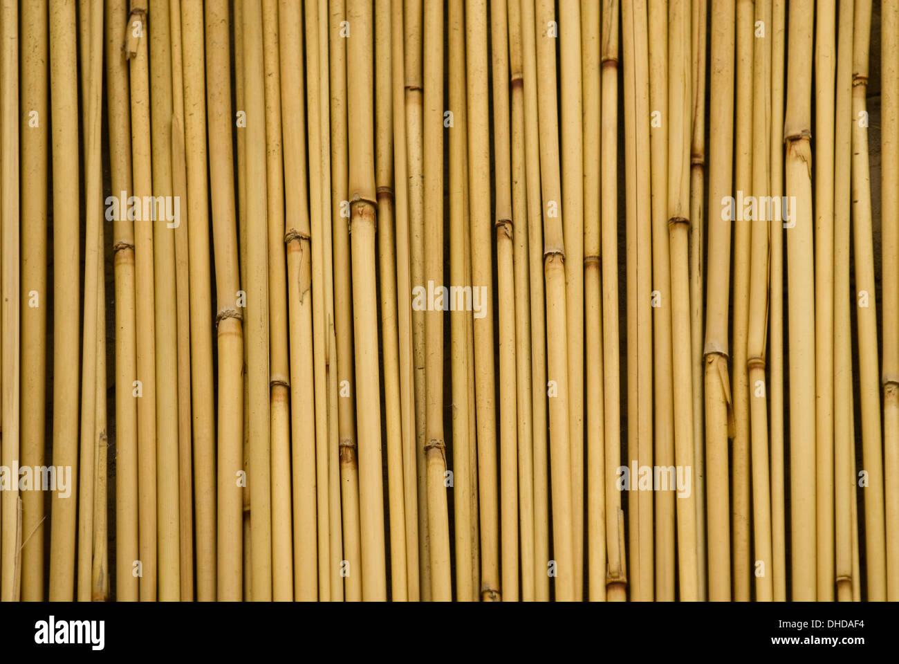 Bamboo Sticks Stock Photos & Bamboo Sticks Stock Images - Alamy
