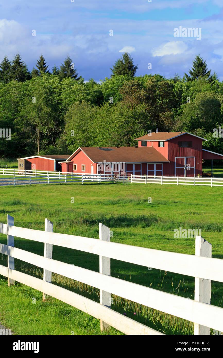 Barn on Vashon Island, Tacoma, Washington State, United States of America, North America - Stock Image