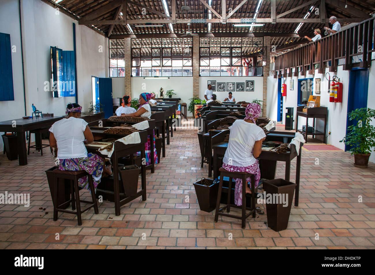 Women rolling cigars in the Dannemann cigar company in Cachoeira, Bahia, Brazil - Stock Image