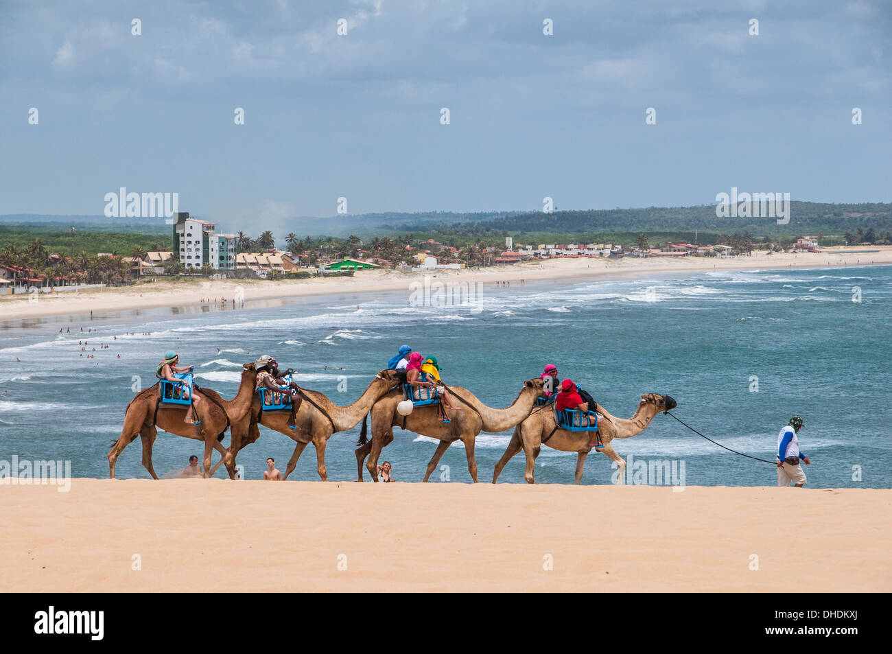 Camel riding in the famous sand dunes of Natal, Rio Grande do Norte, Brazil - Stock Image