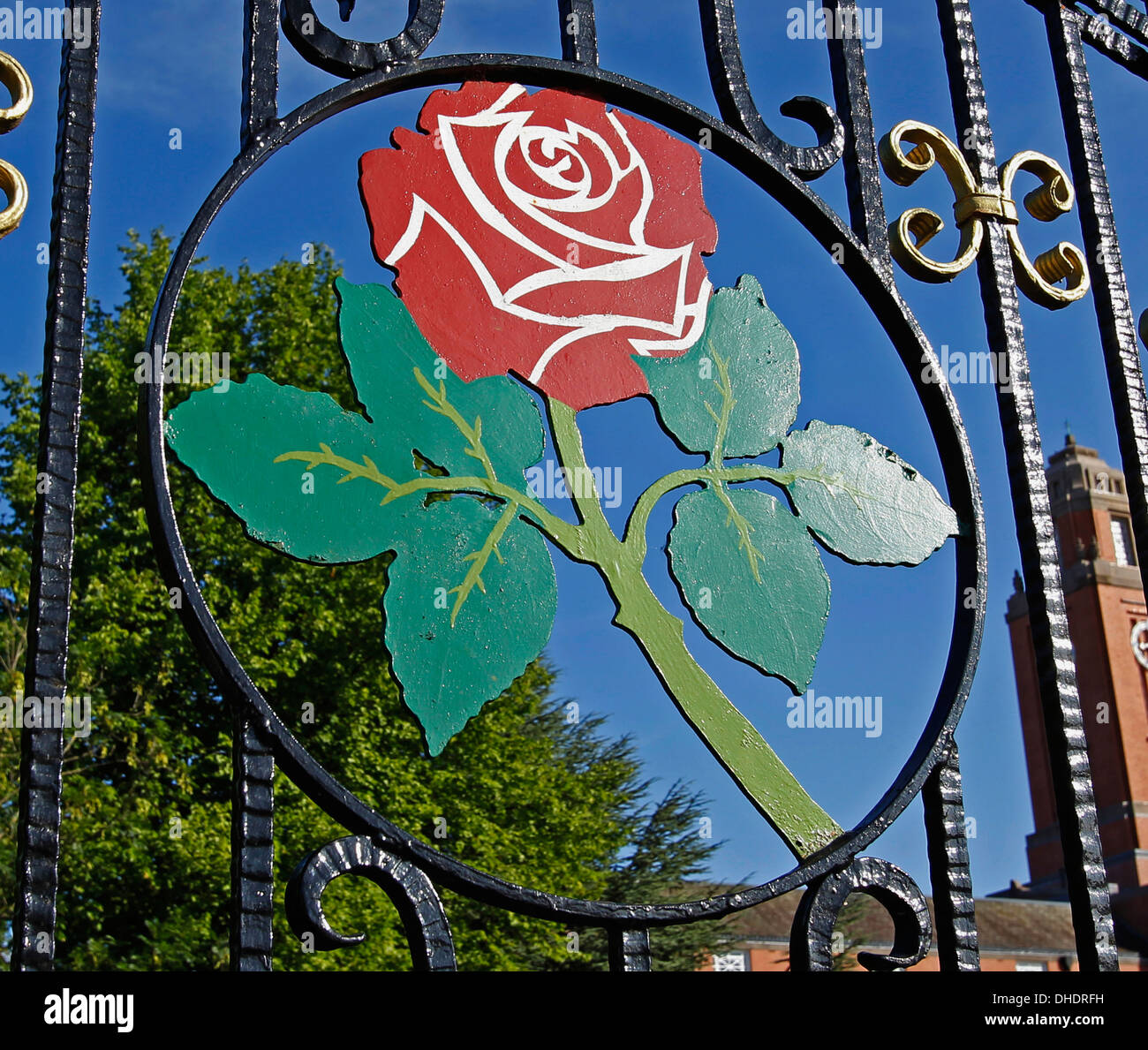 The Lancashire Red Rose on the entrance gates at Emirates Old Trafford Cricket Ground in Manchester against a very blue sky - Stock Image