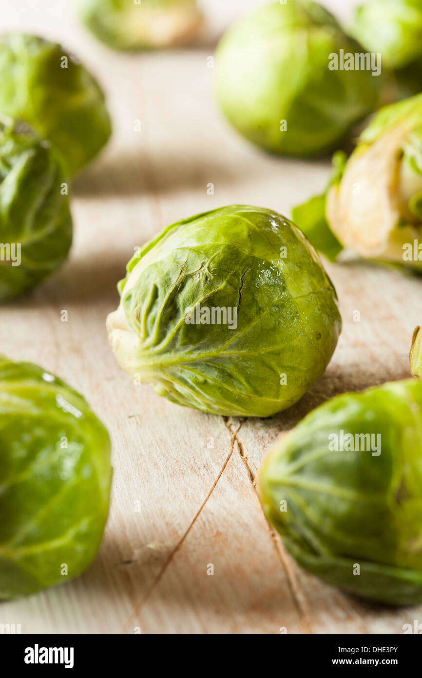 Organic Green Brussel Sprouts Ready to Cook - Stock Image