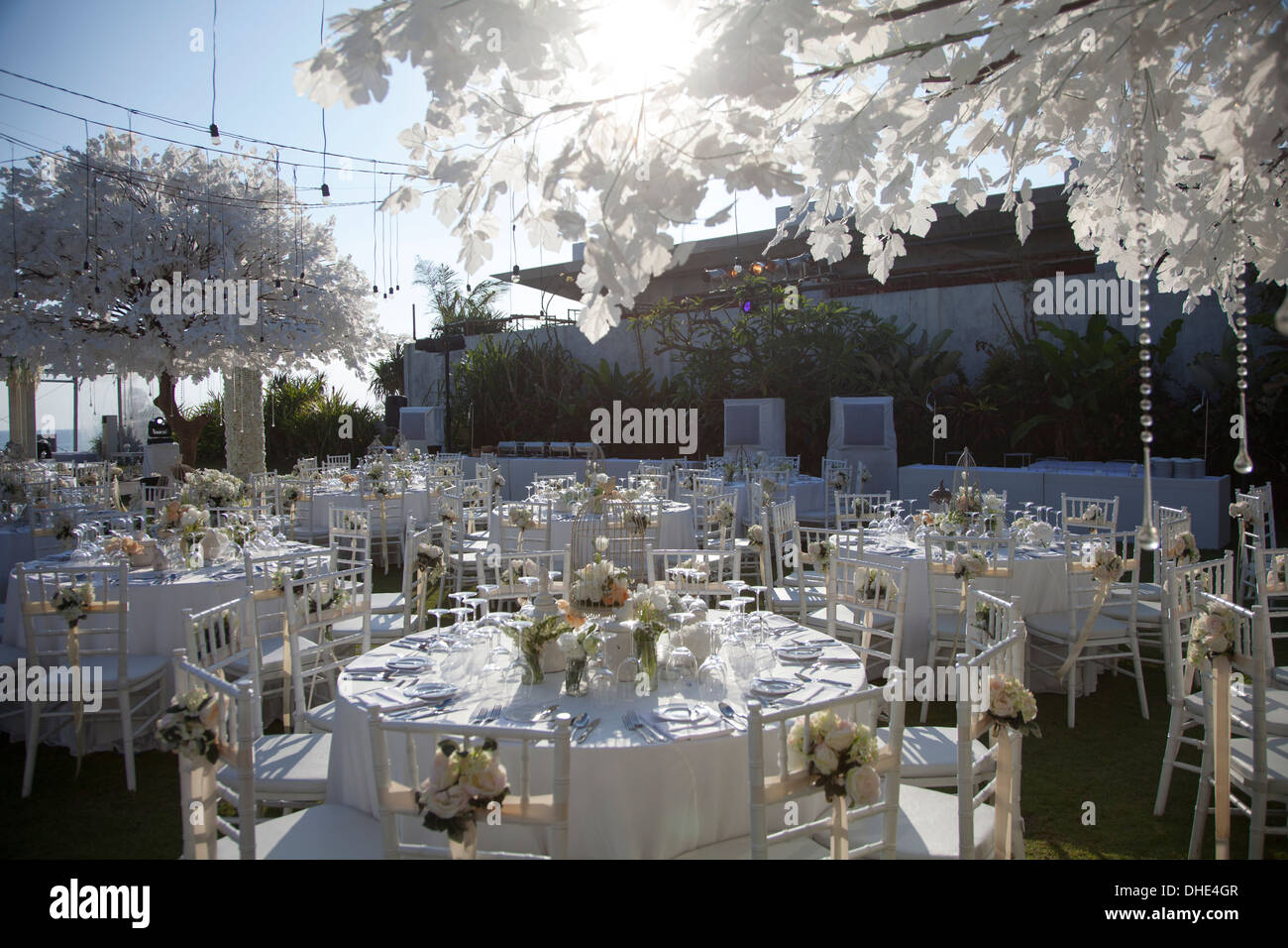 wedding reception decoration table chair trees eat eating plates ...