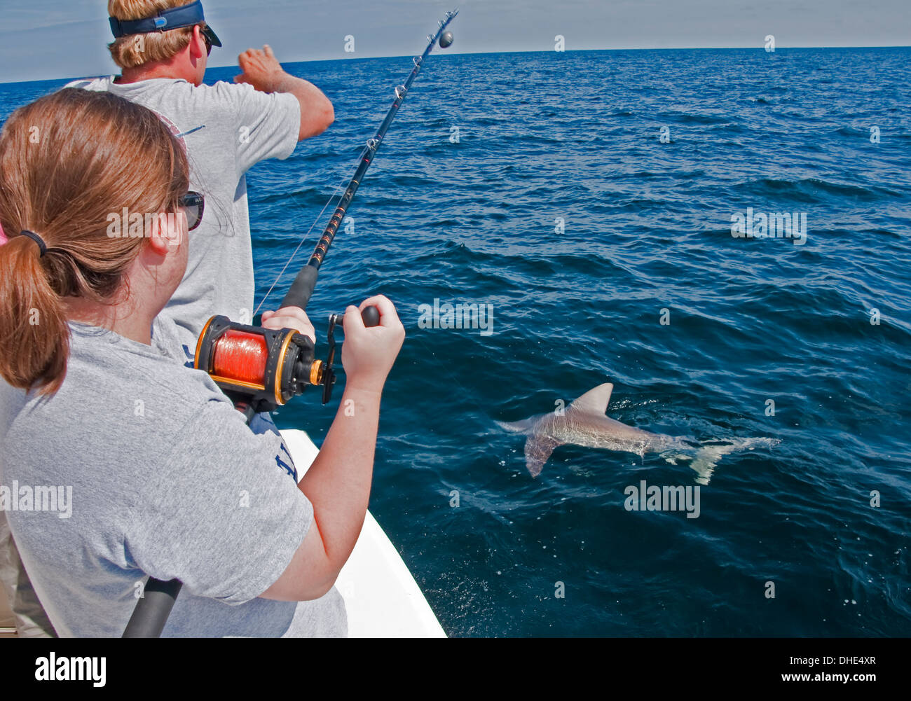 Alabama Gulf Coast charter fishing with shark on line. - Stock Image