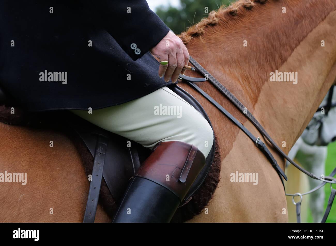 Close-up of horse and rider at fox hunt and smoking cigar. - Stock Image