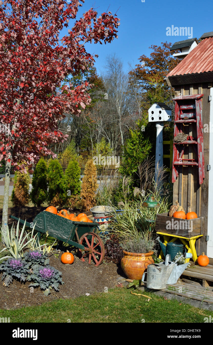Autumn New England outside scene with pumpkins, plants and watering cans in front of wooden building. USA - Stock Image