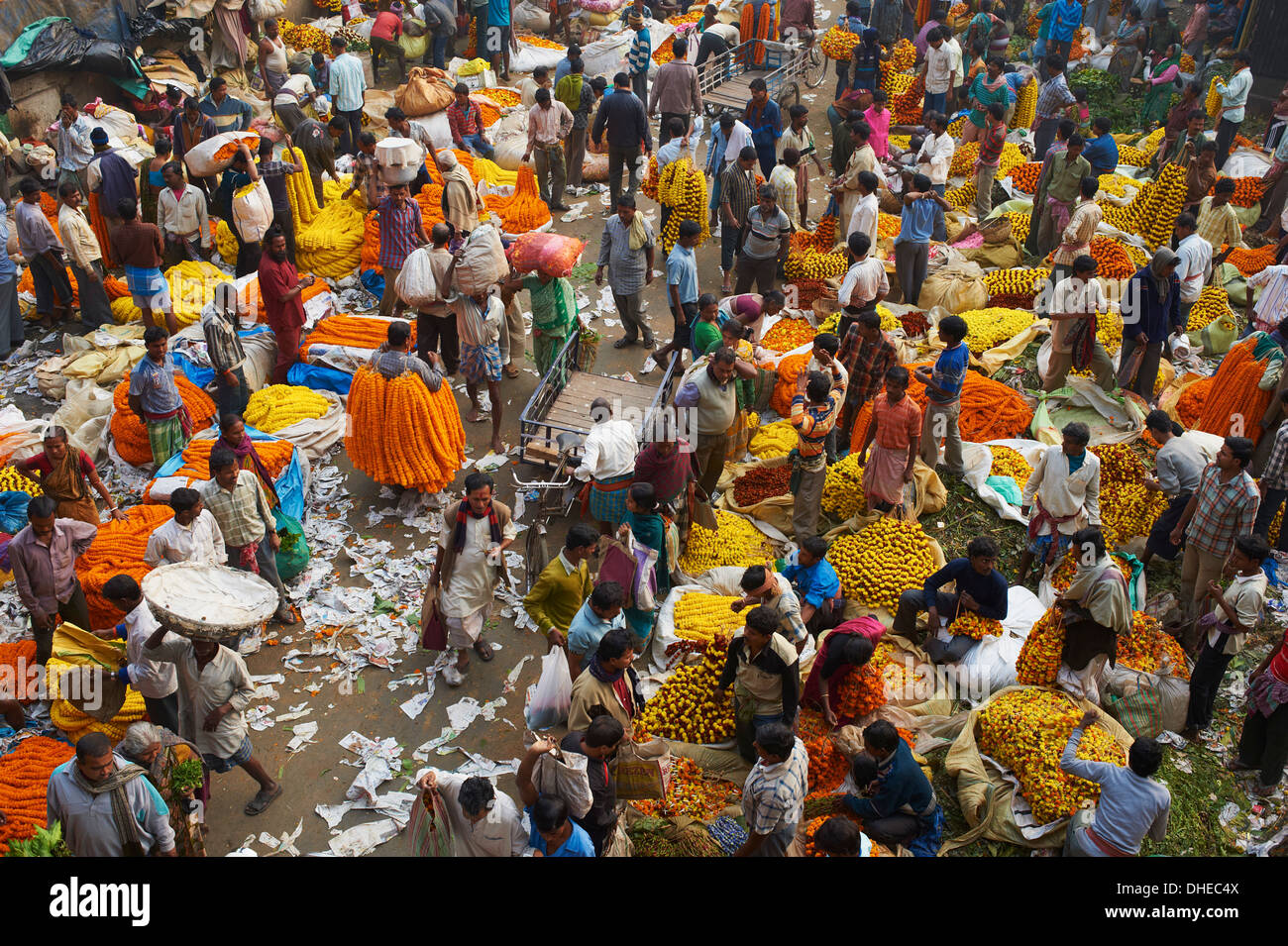Mullik Ghat flower market, Kolkata (Calcutta), West Bengal, India, Asia - Stock Image