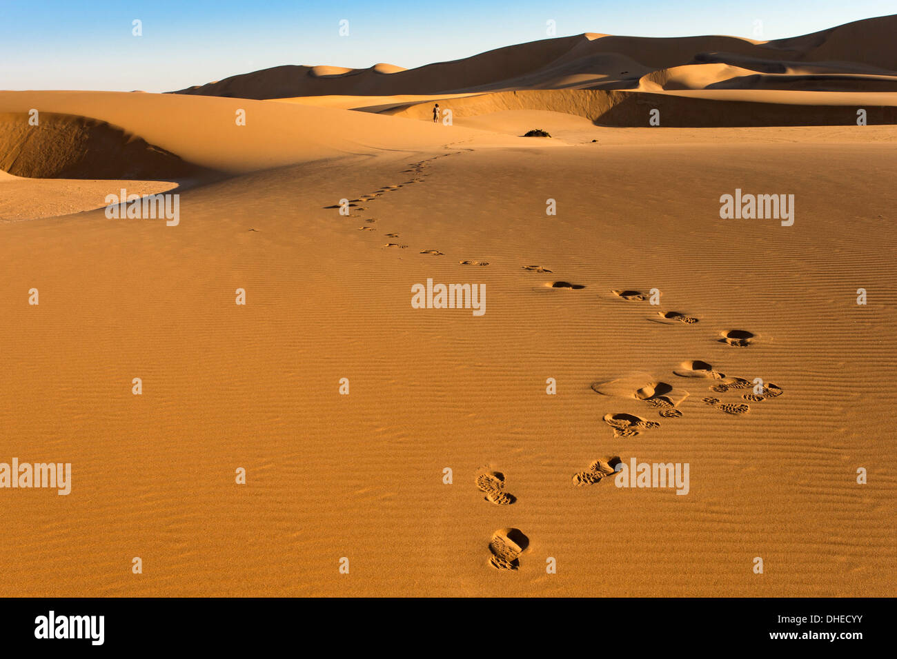 Tourist on sand dunes near Swakopmund, Dorob National Park, Namibia, Africa - Stock Image