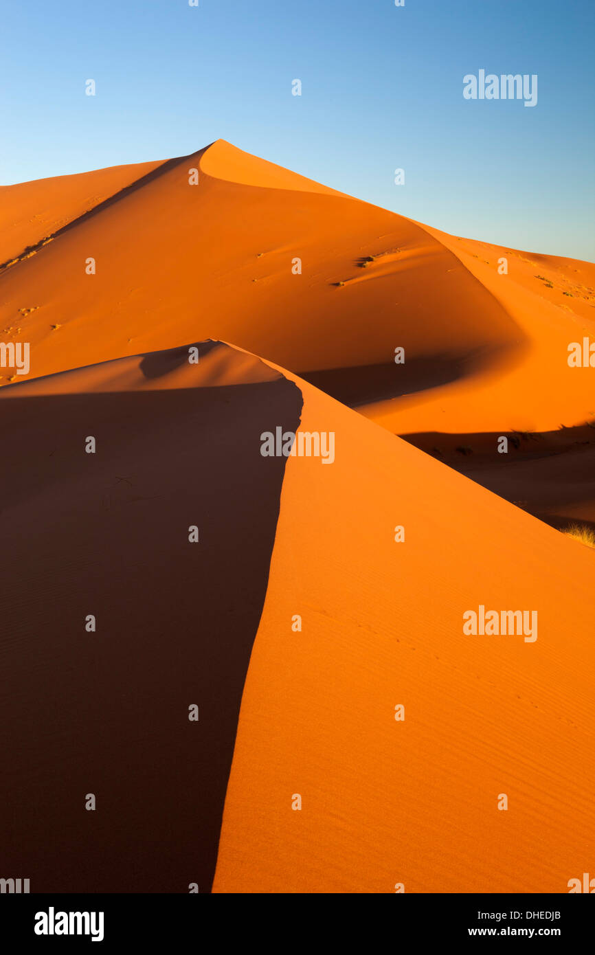 Sand dunes of Erg Chebbi, Merzouga, Meknes-Tafilalet, Morocco, North Africa, Africa - Stock Image