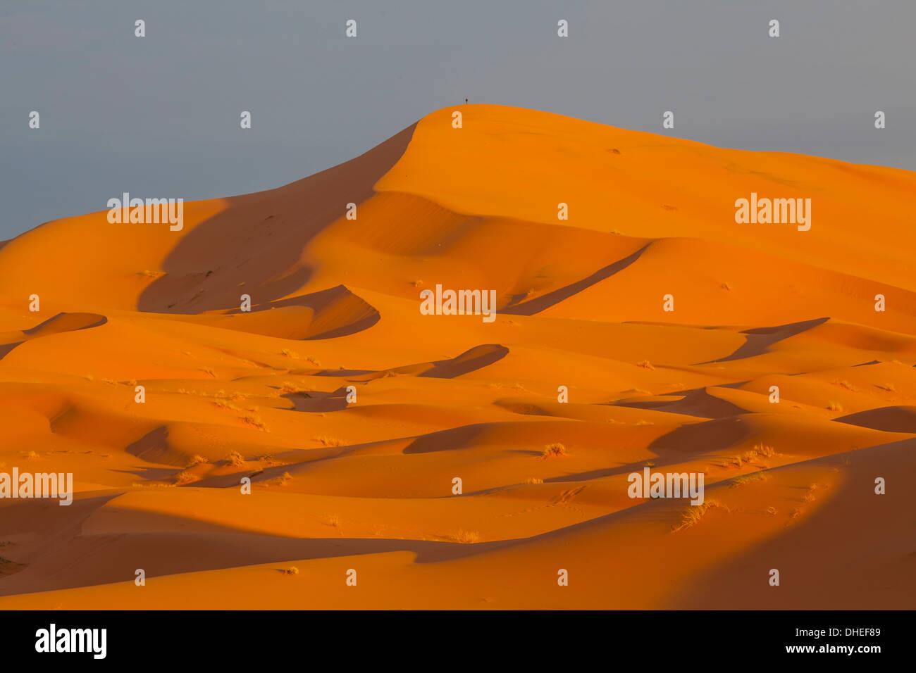 Sand dunes, Sahara Desert, Merzouga, Morocco, North Africa, Africa - Stock Image