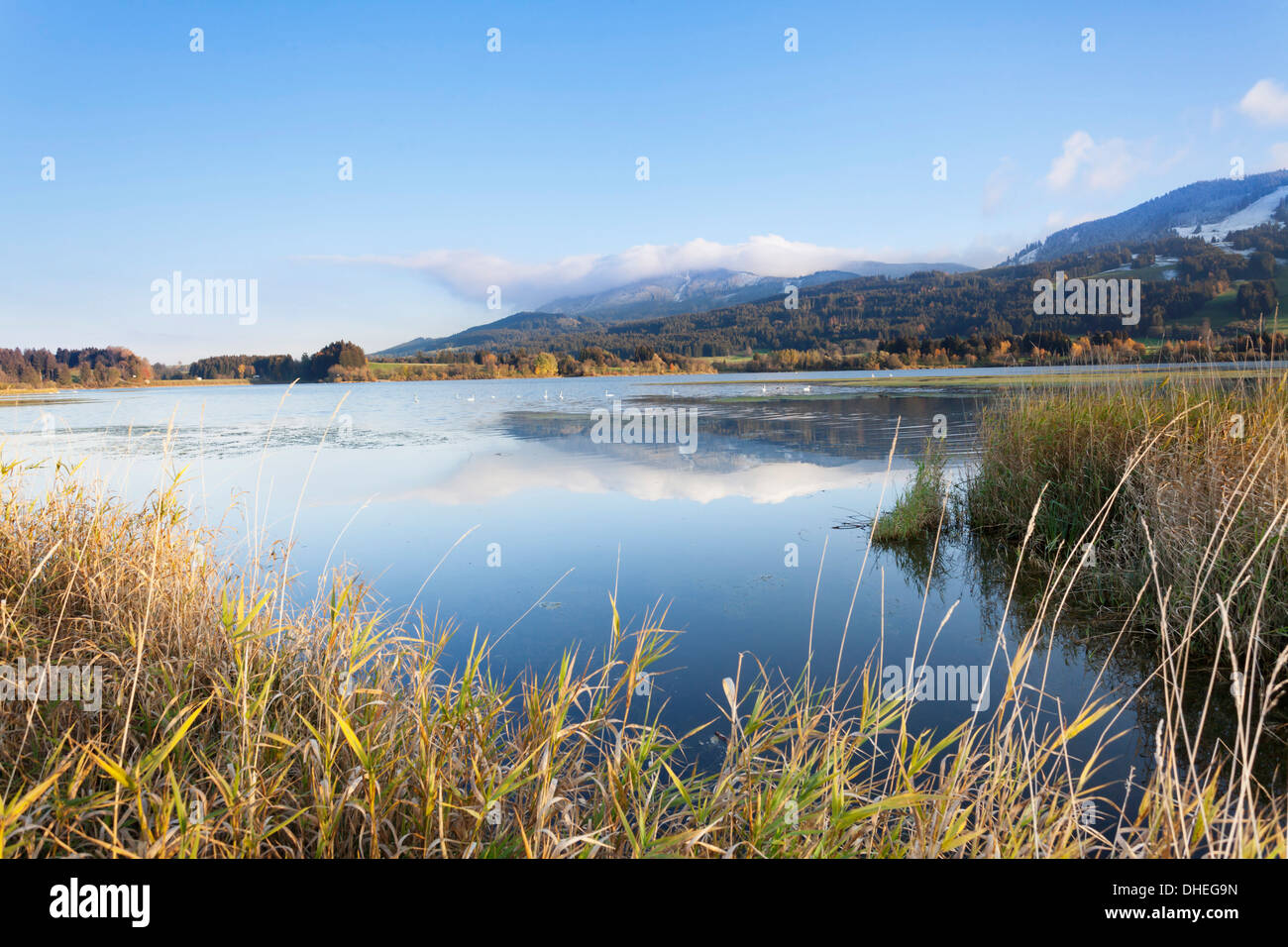 Gruntensee in autumn, Ostallgau, Allgau, Allgau Alps, Bavaria, Germany, Europe Stock Photo