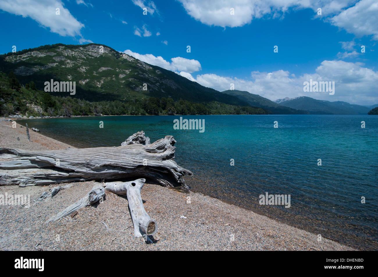 Mountain lake with wild flowers, Ruta de los Siete Lagos, Argentina - Stock Image
