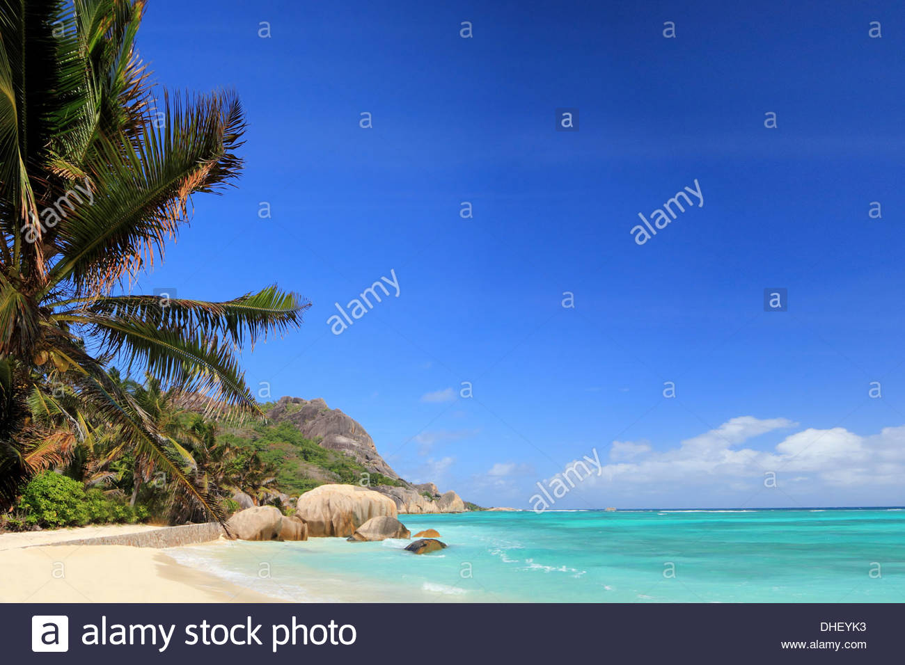 Beach and palm trees, La Digue, Seychelles - Stock Image