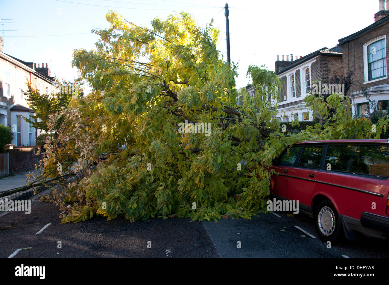 St Jude storm October 28th 2013. Hackney , East London. A fallen tree blocks the road. Stock Photo