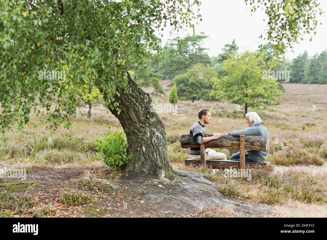 Senior man and mid adult man sitting on bench Stock Photo