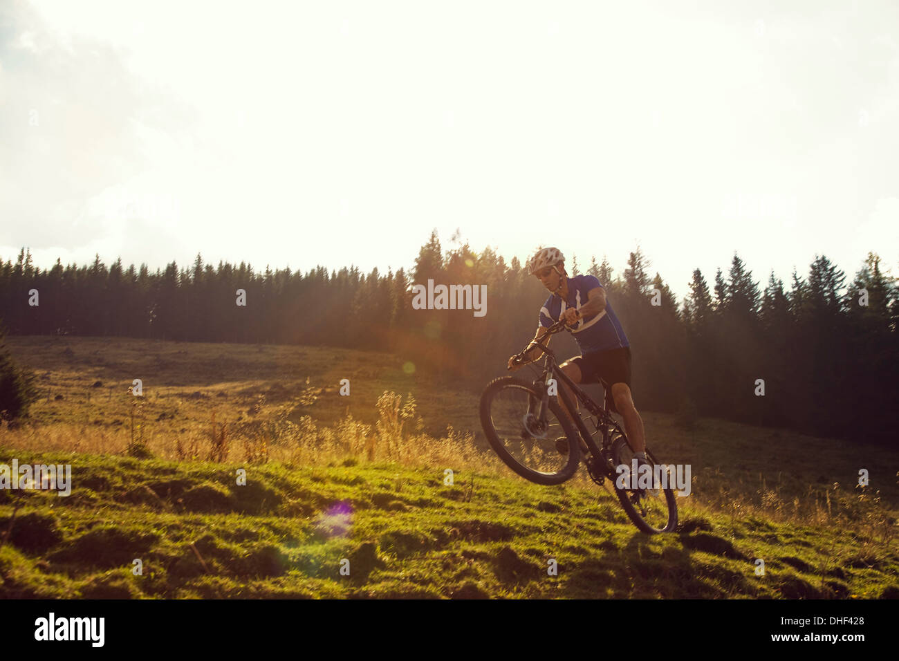 Mature man mountain biking, Styria, Austria - Stock Image