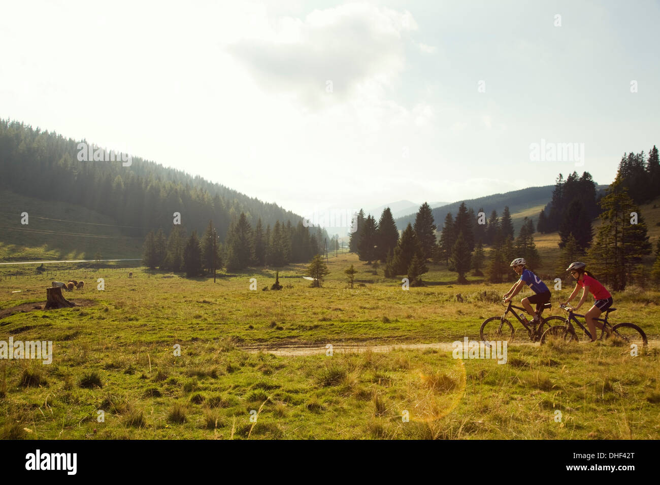 Man and woman mountain biking, Styria, Austria - Stock Image