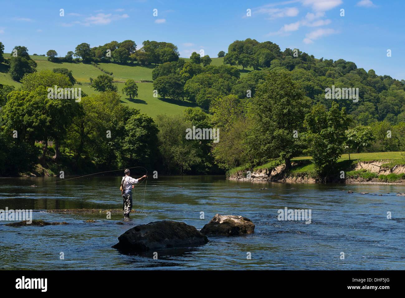 Man fishing in River Wye, Herefordshire, England, UK - Stock Image