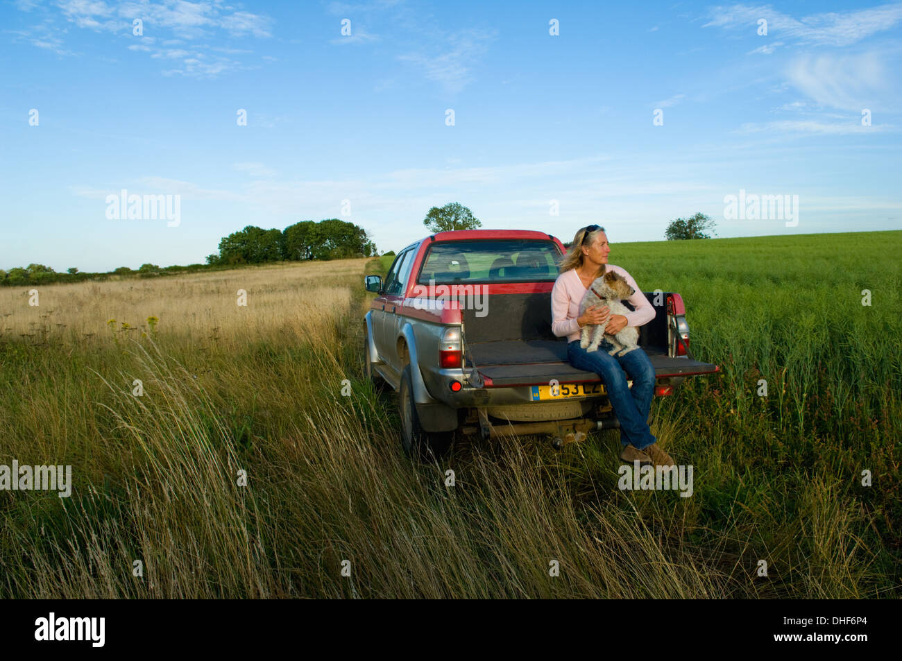 Woman sitting on back of pick up truck in a field, holding a dog - Stock Image