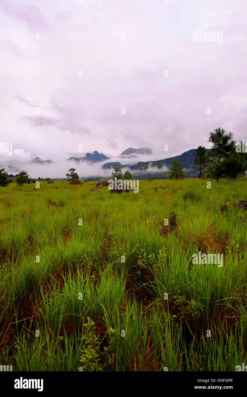 Far view of Volcan Baru in Chiriqui province Republic of Panama - Stock Image