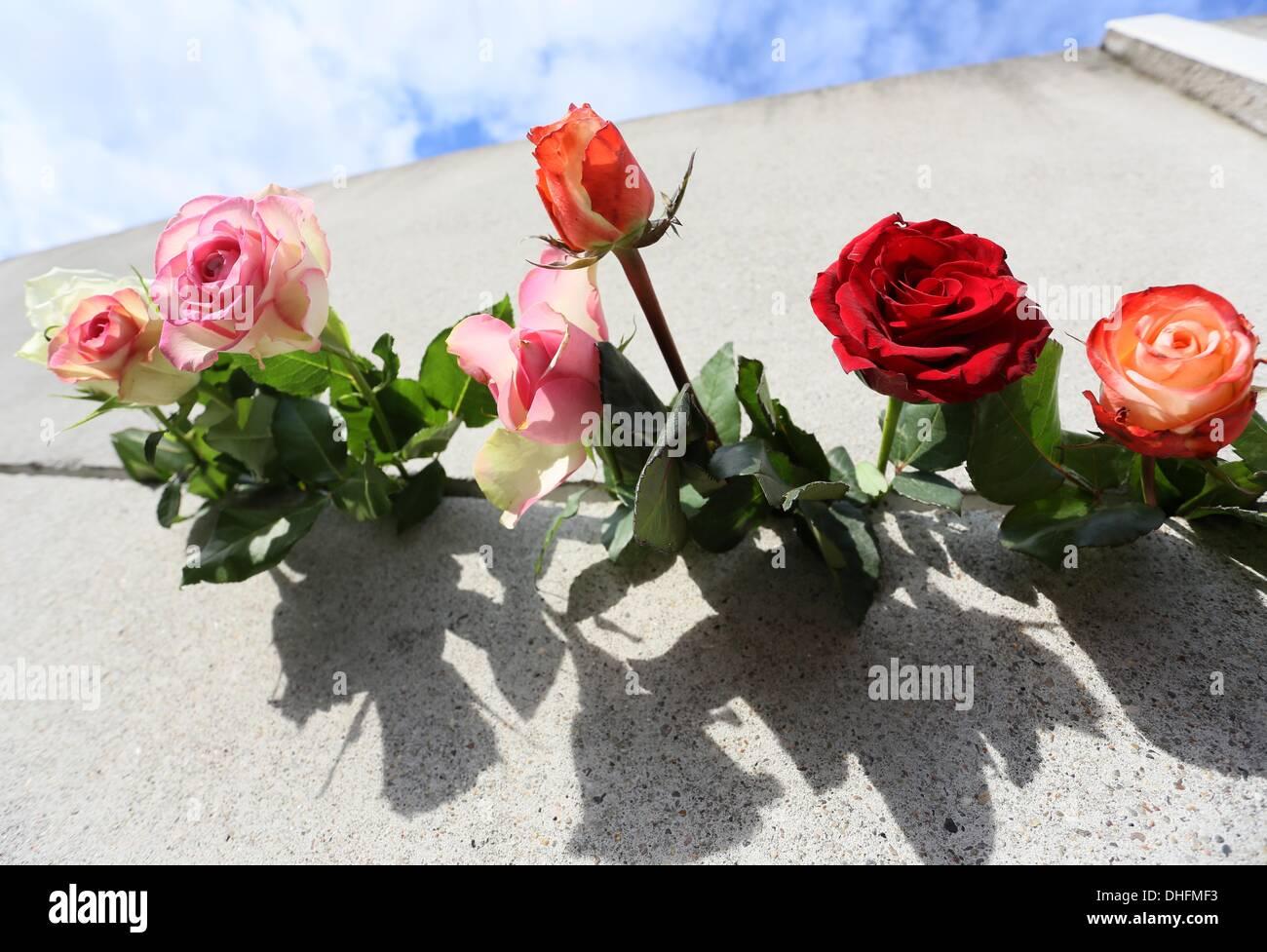 Berlin, Germany. 09th Nov, 2013. Roses stuck in a gap of the memorial of the Berlin Wall in Berlin, Germany, 09 November 2013. Photo: STEPHANIE PILICK/dpa/Alamy Live News - Stock Image
