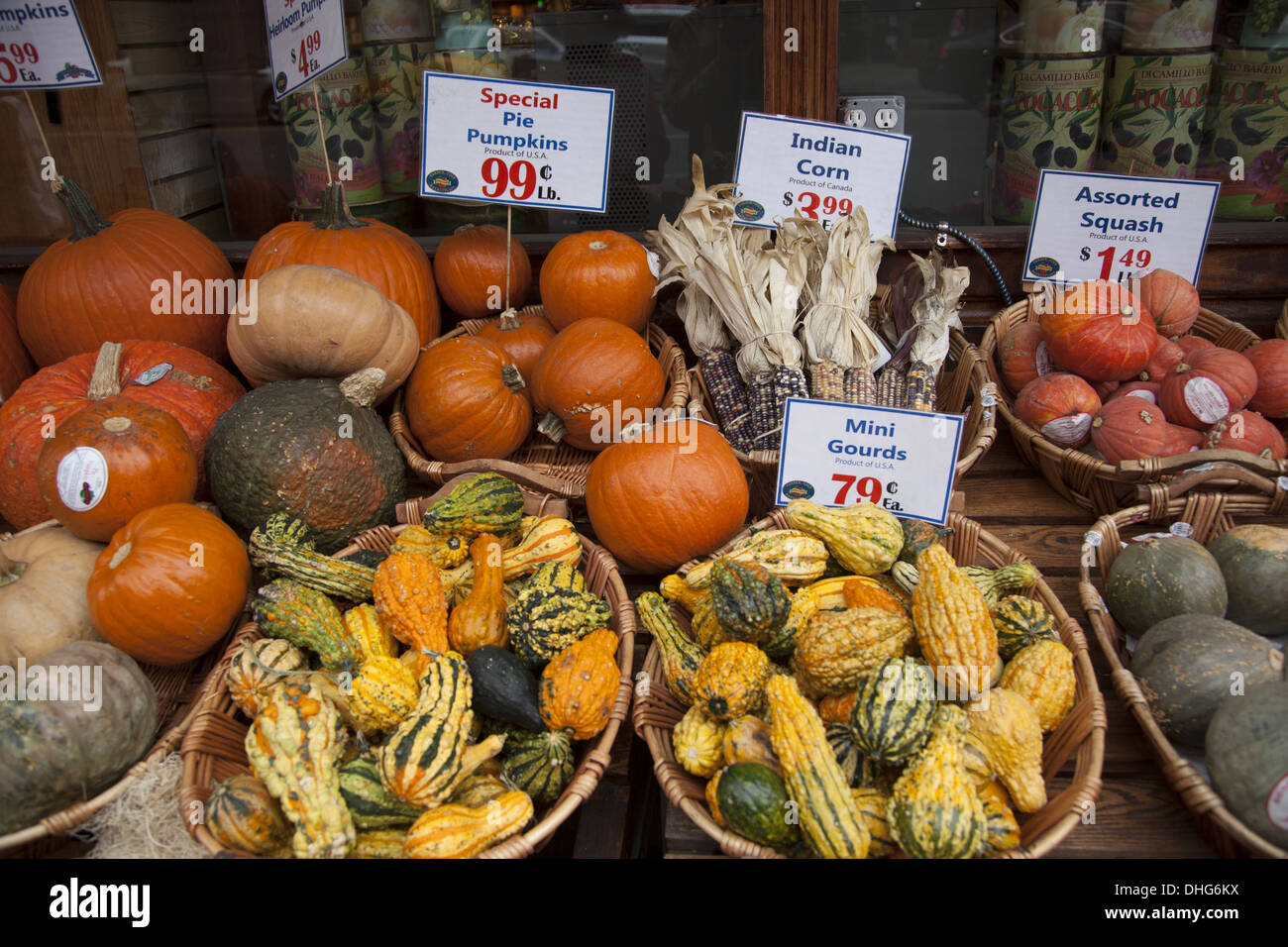 Food market display of autumn squashes, gourds and pumpkins in Manhattan, NYC. - Stock Image