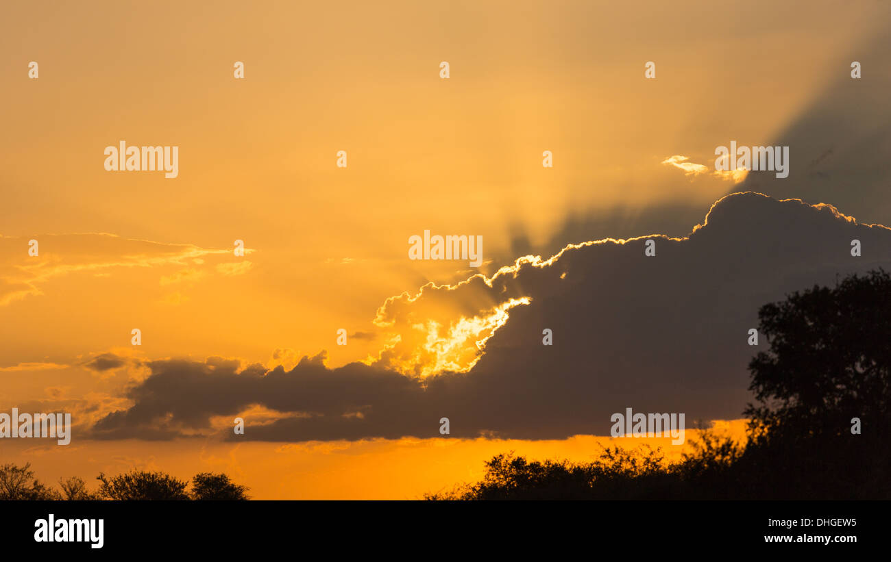 Sunlight radiating from behind a cloud over the Kruger National Park SA, 2013. - Stock Image