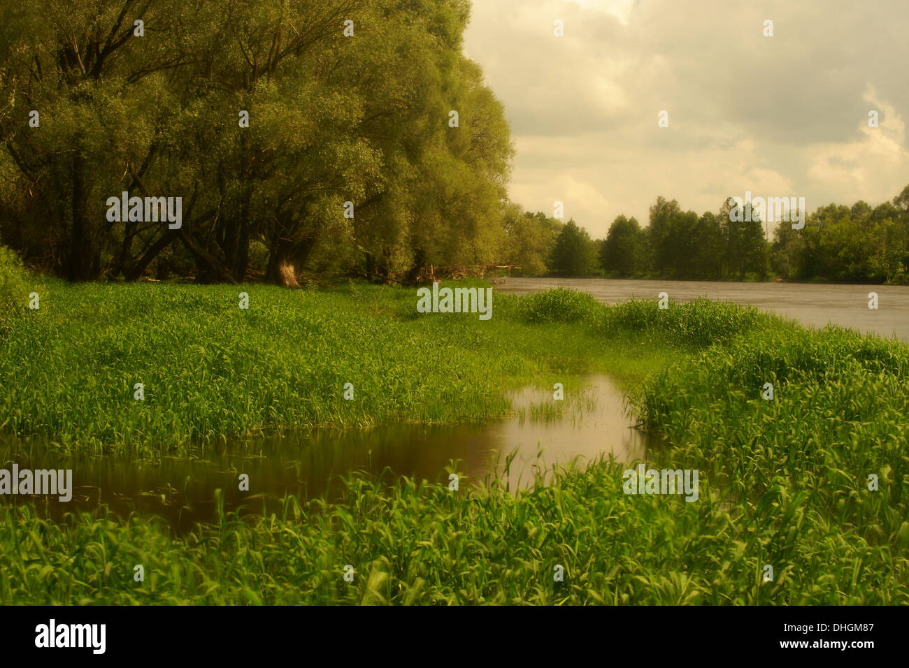 The Bug river in Podlaskie Province, north eastern Poland. Stock Photo
