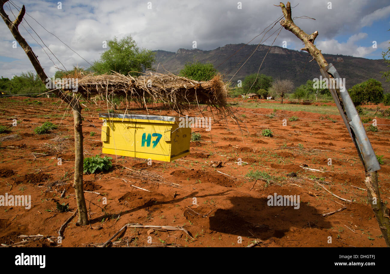 Bee hive fence designed to deter African Elephants from raiding crops around the borders of Tsavo National Park in Kenya - Stock Image
