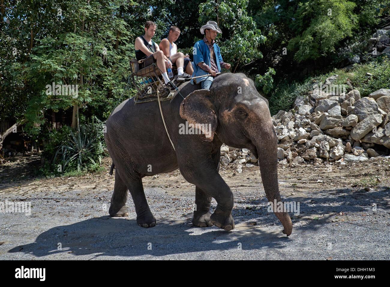 Tourist elephant trekking in Thailand S. E. Asia - Stock Image