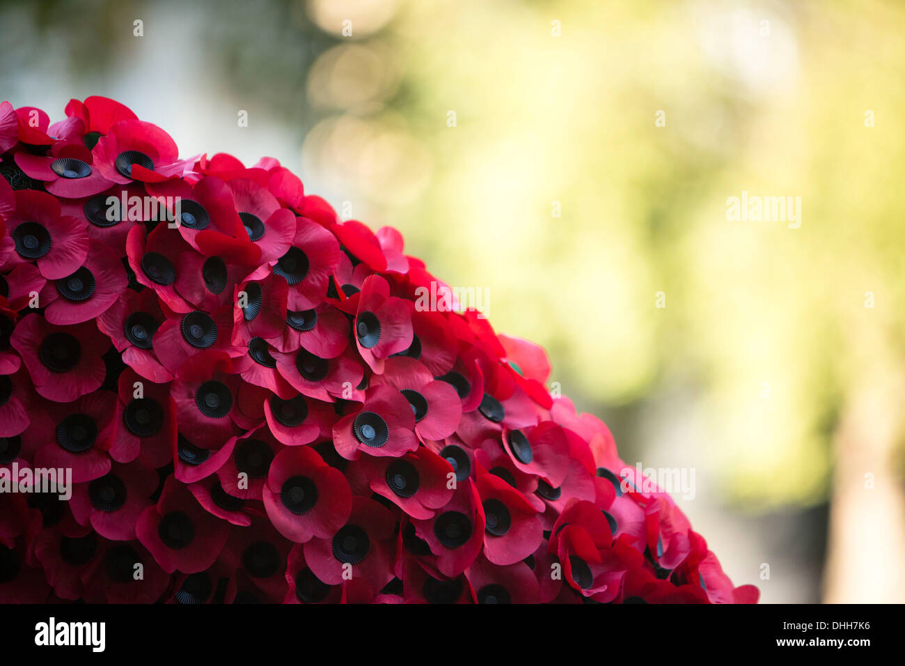 London, UK, UK. 10th Nov, 2013. Poppies are pictured at the Fields of Remembrance at Westminster Abbey in London, United Kingdom. © James Gasperotti/ZUMAPRESS.com/Alamy Live News - Stock Image