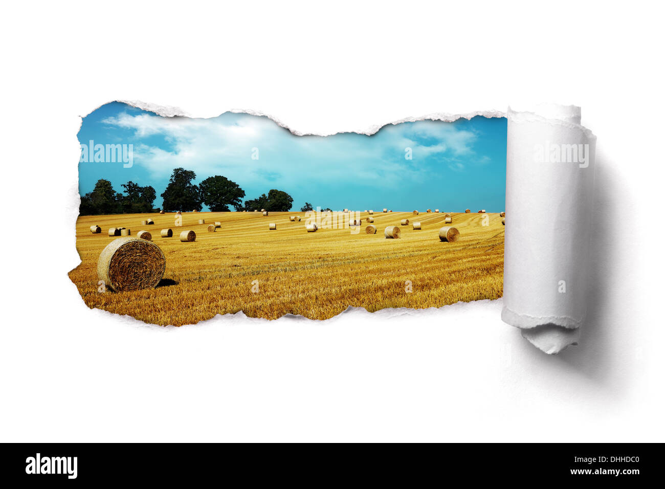 Torn paper over a summer hay bale field landscape Stock Photo